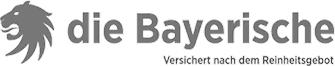 logo die bayrischesw